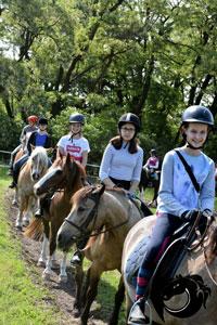 Gruppe des Reitercamps auf Pferden