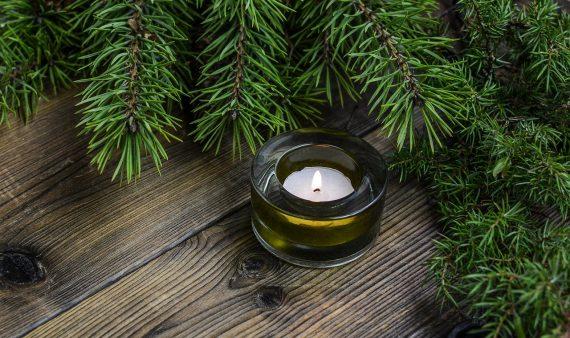 Teelicht-Kerze mit Tannengruen.